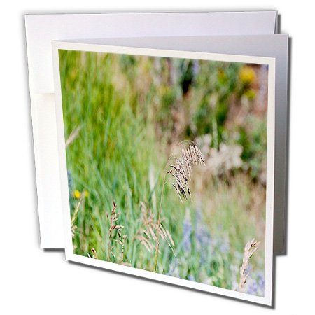 Jos Fauxtographee Realistic - A Weed Floating in the Wind on a Grassy Weed Backdrop with Spots of Blue and Yellow - 1 Greeting Card with envelope (gc_47445_5)