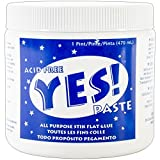 Gane Yes All-Purpose Stik Flat Glue, 1-Pint