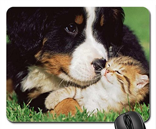 Unconditional Love.. Mouse Pad, Mousepad (Cats Mouse Pad)