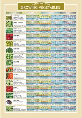 Growing Vegetables Two Sided Color Informational Chart (Vegetable Chart compare prices)