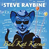 Step It Up - Steve Raybine