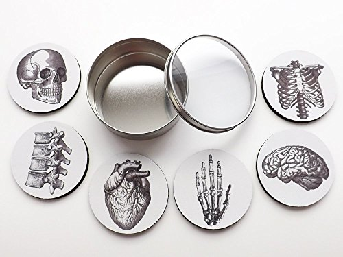 Anatomy Coasters Gift Set six 3.5 inch coasters brain skull anatomical heart human body skeleton doctor nurse graduation