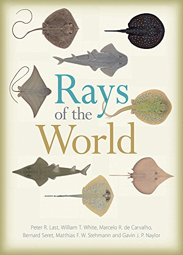 Rays of the World (The Biology Of Sharks And Rays compare prices)