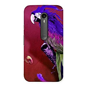 Impressive Magic Parrot Multicolor Back Case Cover for Moto G Turbo