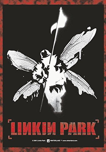 Hybrid Theory Linkin Park poster Bandiera