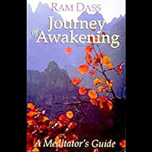 Journey of Awakening Hörbuch