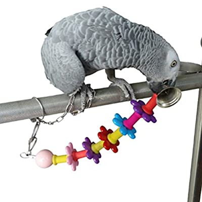Twinkling Stars Pet Bird Bites Toy Parrot Chew Cage Hanging Swing Climb Toy Cockatiel