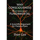 Why Consciousness Is Not Emergent But Fundamental: A Scientific Argument for Panpsychism