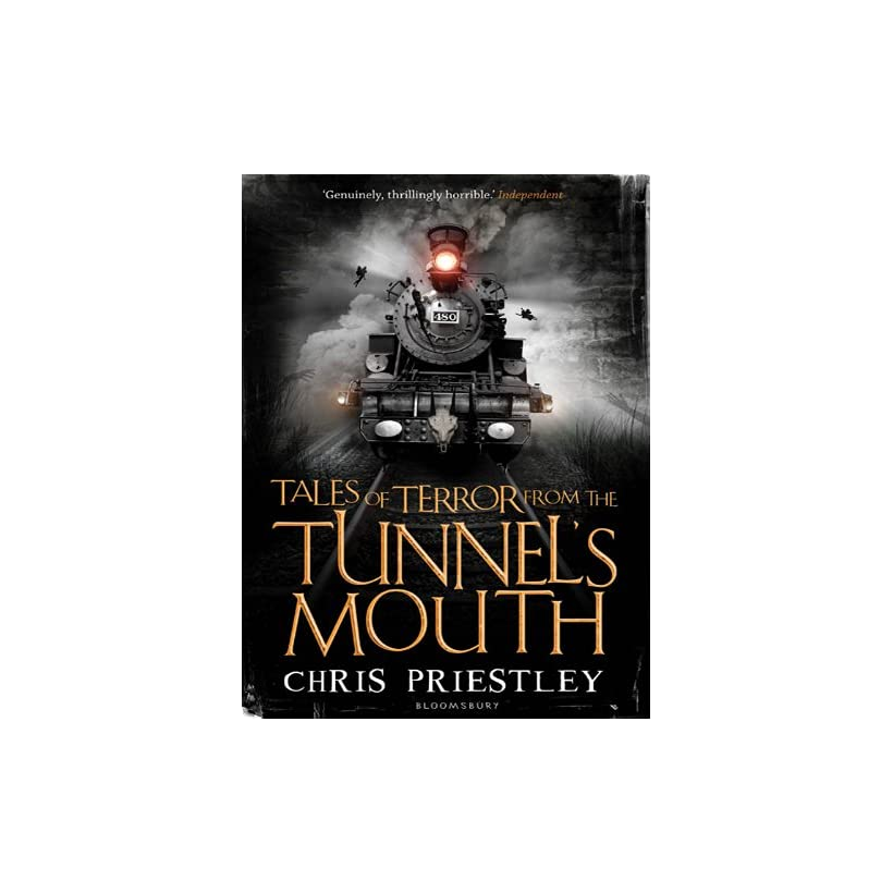 Einsteinýs Tunnel Detour from Terror S. Perone Kindle