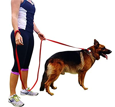 Dog Training Leash 8 Ft Long Heavy Duty Red Lead For Dogs with Soft Padded Handle For Comfort
