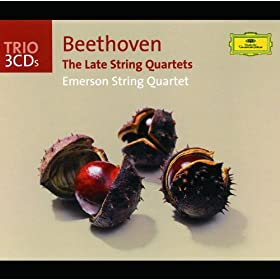 Beethoven: String Quartet No.15 in A minor, Op.132 - 2. Allegro ma non tanto