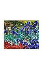 Especial Arte Lienzo Iris Multicolor