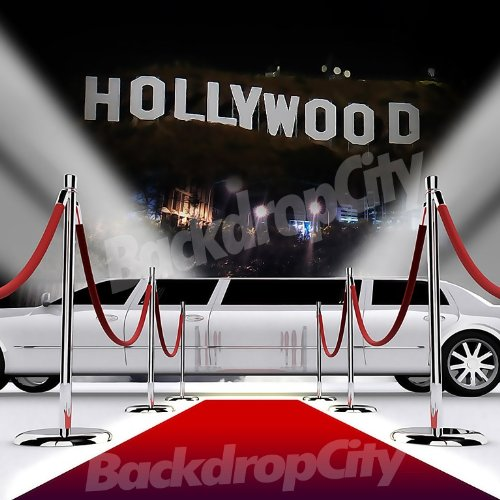 10x20 Hip Hop Rap Hollywood Limo Background Backdrop