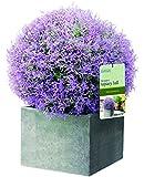 Gardman 02810 30 cm Diameter Topiary Ball Purple Flower Effect