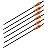 Wizard Archery Carbon Arrows Crossbow Bolts - 6/pack
