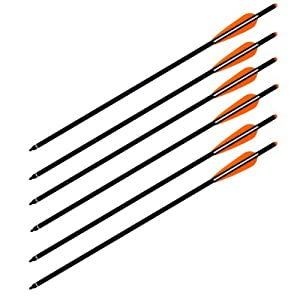 Wizard archery carbon arrows crossbow bolts for Crossbow fishing bolts