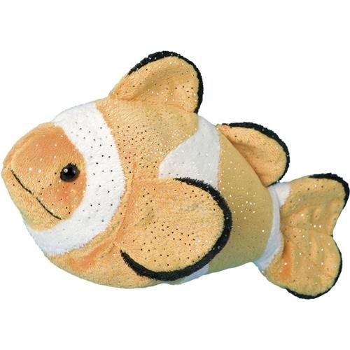 Bobo Clown Fish