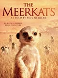 The Meerkats (AIV)