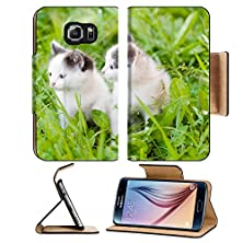 buy Msd Samsung Galaxy S6 Flip Pu Leather Wallet Case Two Small Kittens On The Green Grass Looking Away Image 22024905