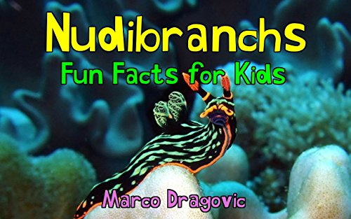 Nudibranchs: Fun Facts for Kids, Picture Books for Kids, Beautiful Photos and Interesting Facts About Nudibranchs & Sea Slugs! (Hermaphrodite Picture compare prices)