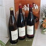 赤ブドウ100%ジュース ワイン製法ドイツ産