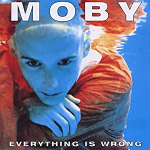 moby everything is wrong essay Moby's essays from his cd play and anyone else who rubs them the wrong way wish to say that i agree with much of what moby has to say.
