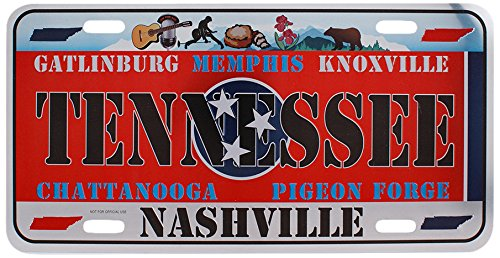 Dimension 9 Home Decorative Plate Tennessee Garden Plates