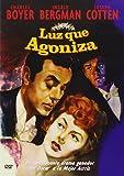 Luz Que Agoniza [Import espagnol]