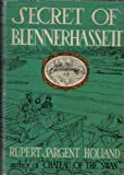 img - for Secret of Blennerhassett book / textbook / text book