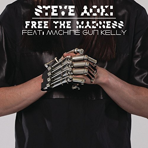 Steve Aoki-Free The Madness-WEB-2014-LEV Download