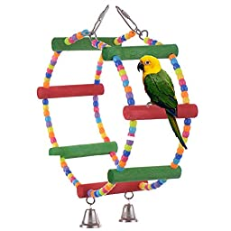 Color Double Ring Stand Pet Bird Parrot Macaw Toys Parrot Bites Toy Macaw African Greys Budgies Funny Toy