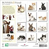 Bunnies & Friends 2014 Calendar