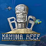 516AzU3fwYL. SL160  Big Kahuna Reef [Download]