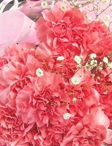 色お任せカーネーションの花束20本母の日にも記念日にも