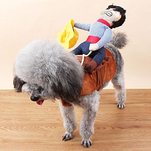 HuaYang Fancy Funny Pet Dog Teddy Cute Costumes Novel Riding Cowboy Knight Coat Clothes XL (Adorable Dog Costumes)