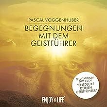 Begegnungen mit dem Geistführer Hörbuch von Pascal Voggenhuber Gesprochen von: Pascal Voggenhuber