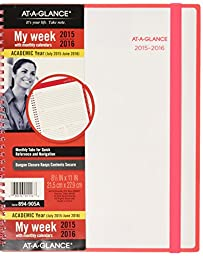 AT-A-GLANCE Weekly / Monthly Planner, Color Play, July 2015-June 2016 Academic, 8.5 x 11 Inches, Color May Vary(894-905A)