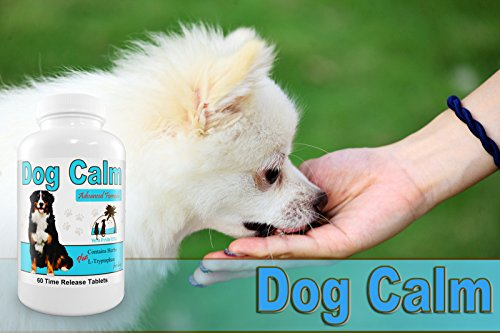 Natural Medication For Dog Aggression