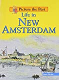Life in New Amsterdam (Picture the Past)