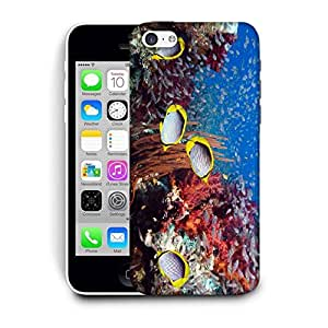 Snoogg Multicolor Fish Printed Protective Phone Back Case Cover For Apple Iphone 5C