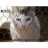 Miezi - Eine wahre Katzengeschichte: Wie alles begann...