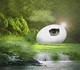 Wake Up Call by Cross (2012-02-21)