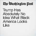 Trump Has Absolutely No Idea What Black America Looks Like | Eugene Robinson