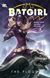 Batgirl: The Flood (Batgirl (DC Comics Quality Paper))
