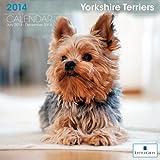 LittleGifts Yorkie 2014 Calendar (7082)