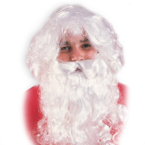 Santa Wig and Beard Set Costume Accessory - 1