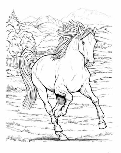 Wonderful World of Horses Colouring Book (Dover Coloring Book)