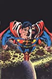 Superman: The Man of Steel, Vol. 5