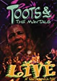 Toots and the Maytals - Live