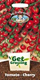 Mr. Fothergill's 21362 20 Count Get Growing Sweet Million F1 Cherry Tomato Seed